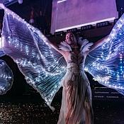 Шоу-проект MALINA, Гродно - фото 1