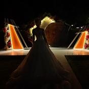 Свадебный организатор Свадебное агентство  «Gold Wedding» , Беларусь - фото 1
