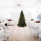Усадьба ForRest загородная свадебная площадка, Гомель - фото 2