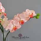 Цветы ручной работы Реалистичные