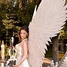 Ангел и скрипка  Виктория Бусько