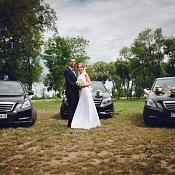 Свадебный оформитель ВероЛюкс, Беларусь - фото 3